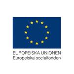 Svenska ESF-rådet