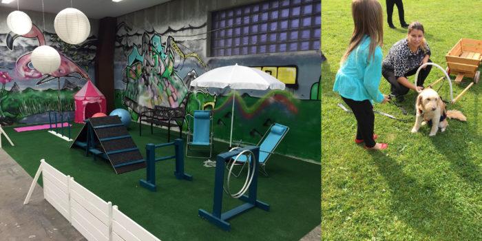 Våra färgglada lokaler samt en bild på en utomhusaktivitet med hundar